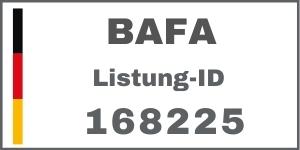 BAFA Fördermittel Experte